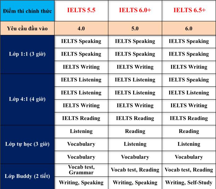 Yêu cầu đầu vào và đầu ra khóa học IELTS đảm bảo trường Anh ngữ PINES